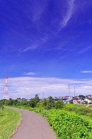 北海道 土手の遊歩道