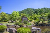 福井県 越前市 万葉の里 味真野苑