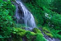 新緑の吐龍の滝
