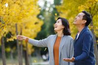 紅葉を眺める若いカップル