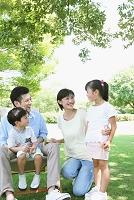 木蔭に佇む日本人家族