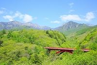 山梨県 新緑の東沢大橋と八ヶ岳