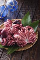 生鮮魚貝 蛸 / ゆでだこ