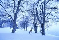スイス 家に延びる雪道