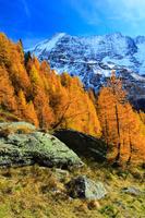 スイス レッチェン谷と黄葉