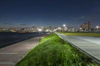 東京都 豊洲ぐるり公園と晴海、芝浦方面のビル群 夜景