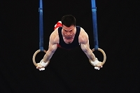 体操競技 吊り輪