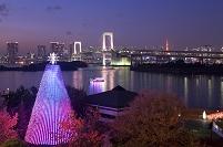 東京都 台場メモリヤルツリー