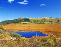 秋の八島ヶ原高層湿原、八島高原