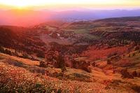 群馬県 渋峠から望む朝焼け