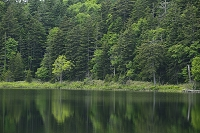 北海道 カムイト沼