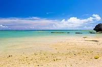 沖縄県 新原ビーチから望む太平洋