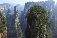 中国 湖南省 張家界 天子山自然保護区 袁家界景区 乾坤柱