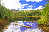 長野県 秋の乗鞍高原 牛留池