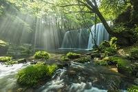 日本 熊本県 小国町 鍋ヶ滝