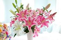 ピンクと白のユリの花