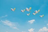 空を飛ぶニワトリ