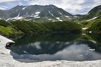 富山県 立山 ミクリガ池の夏景