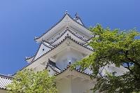 岐阜県 大垣城