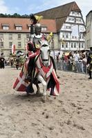 ドイツ 騎士トーナメント