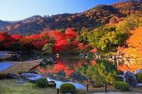 京都府 紅葉の天龍寺の庭園