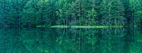 長野県 新緑の御射鹿池 静かな水面に絵画のように美しく映る木々...
