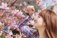 花見をする女性