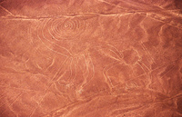 ペルー ナスカの地上絵 猿