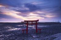 佐賀県 大魚神社の海中鳥居の朝