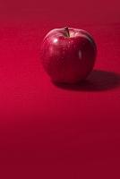 リンゴ 世界一