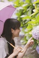 紫陽花にふれる女性
