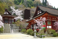 奈良県 談山神社 十三重塔と神廟拝所