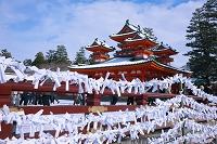 京都府 初詣の平安神宮
