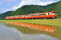 鳥取県 因美線 水鏡のキハ47系みまさかスローライフ列車