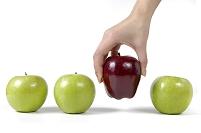 青りんごの中から赤りんごを取る手