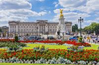 イギリス ロンドン バッキンガム宮殿のガーデニング