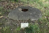 飛鳥資料館の石造物