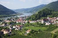 オーストリア ヴァッハウ
