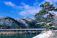 京都府 渡月橋