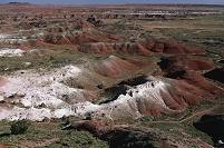アメリカ アリゾナ 化石の森国立公園