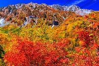 富山県 立山ロープウェイ