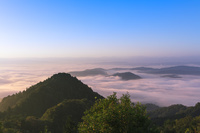滋賀県 御斎峠(おとぎとうげ)の雲海