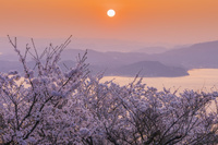 広島県 桜咲く筆影山より瀬戸内海と島々と朝日