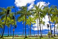 ハワイ カラカウア大通りと行き交う人たち