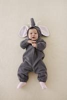 ゾウの着ぐるみを着た赤ちゃん