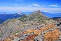 山梨県 間ノ岳より草紅葉と甲斐駒ヶ岳と北岳 南アルプス