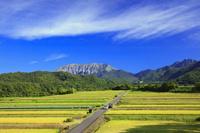 鳥取県 実りの棚田より大山