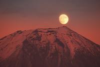 静岡県 昇る月と富士山
