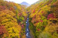 福島県 中津川渓谷