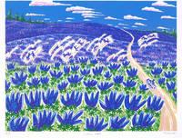 ルピナスの丘(リトグラフ)